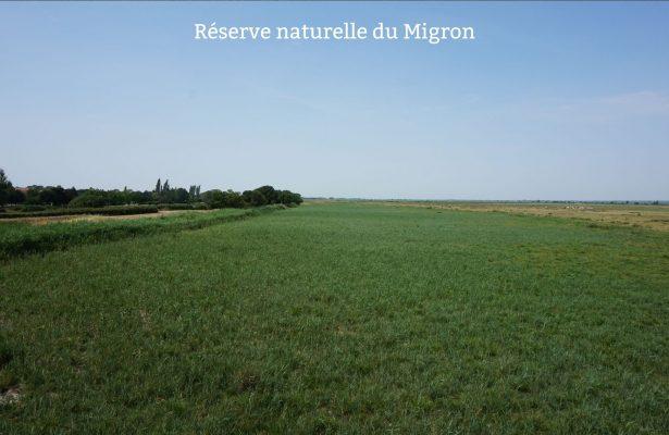 réserve du Migron