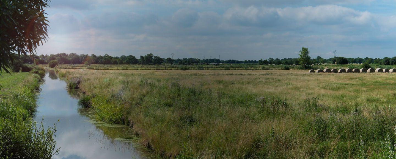 paysage estuaire de la Loire