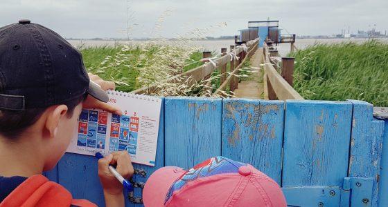 Terre estuaire escapades complice pêcherie Corsept